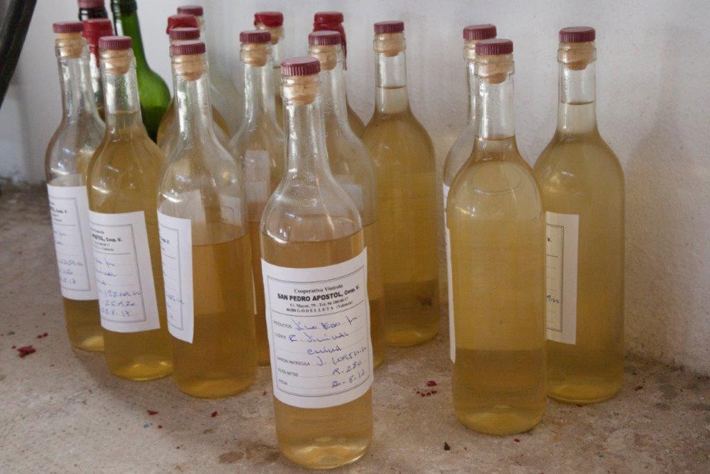 Descubre las variedades de la uva moscatel de Alejandría en la Cooperativa Vinícola San Pedro Apóstol de Godelleta y disfruta de una cata de vinos con aperitivo.