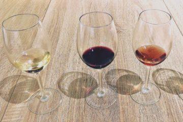 Cata de 3 vinos en el Celler de PROAVA