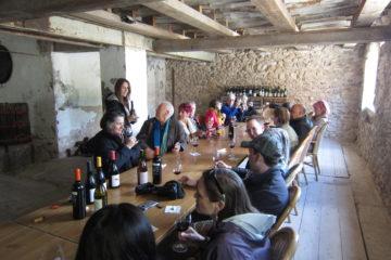 Ruta del vino en Terres dels Alforins